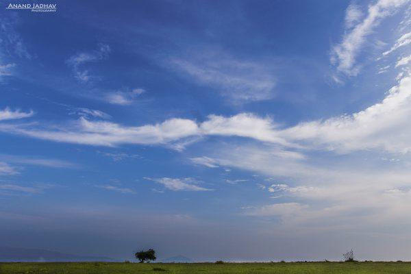 Landscape - Monsoon