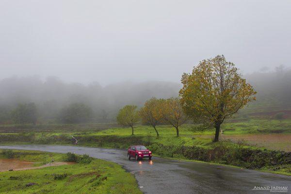 Western Ghat_18